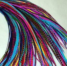 """Real Feather Hair Extensions Bulk 25 Mixed Colours 7-9""""+ UK Seller"""