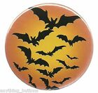 Halloween - Black Bats w/Orange Background - Button or Magnet -YOUR Choice!
