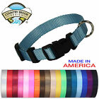 Country Brook Design Economy Nylon Dog Collars(Various sizes & colors available)