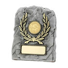 Budget Multi sport Award Wrestling, Archery, Baseball,  Racing FREE Engraving