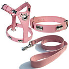 """STAFF SHIELD HARNESS + COLLAR & 1"""" LEATHER LEAD IN 6 COLORS WITH CHROME FITTINGS"""