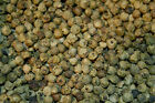 PEPPER PEPPERCORNS GREEN WHOLE INDIA 1 OZ - 16 OZ RESEALABLE BAG