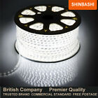 PREMIER IP67 240v Cool White SMD 3528 LED Ribbon Strips Rope Lights UK NOT 12V
