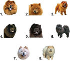 Waterslide Dog Nail Decals Art Set of 20 - Chow Chow