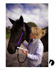 WORMABIT Horse Pony Worming Bit drench for paste No wastage Easy use Purple