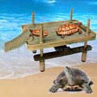 turtle tanks and accessories
