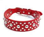 3.5cm Wide Fashion Red Mushroom Studded Leather Collar Dog Pitbull Terrier