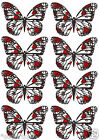 Vine Red Roses - Edible Butterlies Cup Cake Toppers Birthdays & More, Variations