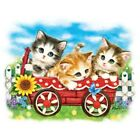 Kittens In A Wagon    Tshirt   Sizes/Colors