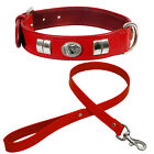 "STAFFORDSHIRE DOG FACE SMALL COLLAR & 1"" LEATHER LEAD, CHROME FITTED IN 7 COLORS"