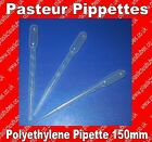 PE PIPETTE 150 MM, CAPILLARY DIAM. 2.5 MM .Buy 10, 50 or 100