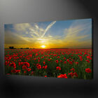 POPPY FIELD SUNSET CANVAS WALL ART PICTURE PRINT FREE UK DELIVERY SIZE VARIETY