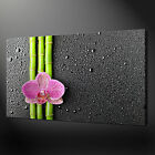 BAMBOO ORCHID CANVAS PRINT PICTURE WALL ART FREE UK DELIVERY VARIETY OF SIZES