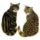 What?? 2 Tiger Cats   Cat  Tshirt    Sizes/Colors
