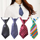 Banquet Adjustable Tie Necktie Striped Polka Dots Plaids fit Women Girls Party