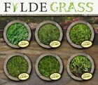 Artificial Grass - Fake Lawn - Astro Turf - EU Made - 9 Types + Sample Packs