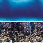 Vepotek Aquarium background double side (Deep Seabed/Coral Rock Fresh/salt water