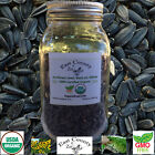 Organic Sunflower Seed: Black oil whole - .5lb to 2lb Jar - CERTIFIED ORGANIC