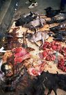 posters and prints for sale - Art print POSTER / CANVAS Animal Carcasses and Meats For Sale at a Market Gabon