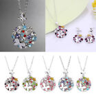 Silver Plated Crystal 3D Round Butterfly Decor Pendant Chain Sweater Necklace