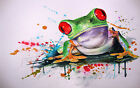 Stunning Abstract Multicoloured Frog Canvas Print - A0, A1, A2
