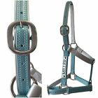 Horse Halter/Headstall - Ocean & Silver- With Nameplate