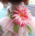 Small Dog Puppy Sunflower Tutu Dress Pet Bow Princess Lace Skirt Summer Clothing