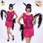 Women Rose-red Sequin Flapper Costume Adult Carnival Sexy Latin Girl Fancy Dress