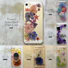 Disegno Mixed Glitters Pressed Dry Flower Floral Case Cover For iPhone Samsung