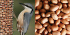 Wild Bird Peanuts 10kg 5kg 2kg 1kg 500g 250g 100g Garden Bird Nuts WHOLE NUTS