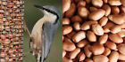 PEANUTS - WILD BIRD FEED - GARDEN BIRDS - SQUIRREL - FEEDER - NUTS - FOOD SEED