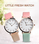 Fashion Simple Ladies Soft Leather Strap Watch Two Needle Dial Dress Watch