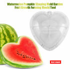 Square/Heart-shaped Watermelon Shaping Mold Garden Fruit Growth Forming Mould LJ