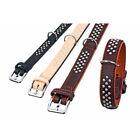 KARLIE RONDO DOG COLLAR DOUBLE LEATHER BROWN COGNAC MULTI STUD MEDIUM SMALL