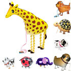 Walking Balloon Foil Helium Decors Pet Animals Party Birthday Kids Pet Toy