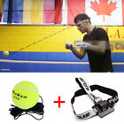 Boxing Fight Ball Training Reflex Striking Solid Reflex Speed Tennis Exercise QA