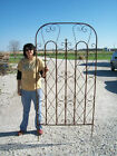 metal garden screen - Really BIG Metal Garden Trellis for a Large Screen for Flowers - Privacy