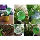 Self Watering Plant Bulb Plastic Water Globe Indoor Outdoor Automatic Holid 3 x
