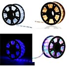 100FT LED Rope Light 2 Wire In/Outdoor Home Decoration Party Lighting 110V