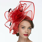 Large Flower Feather Net Fascinator Hat Birdcage Veils Wedding Race Royal Ascot