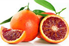 Blood Orange Seeds Blood Orange Organic Fruit Seeds Healthy Food Bonsai Red Lime