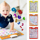 Baby Kids Animals Fruit Sound Wall Chart Read Card Book Early Educational Toys