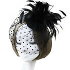 Lady Pillbox Hat Cap Fascinator Feather Hair Clip Cocktail Party Accessory
