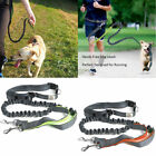 Hands Free Dog Leash Lead Rope Bungee Strip for Jogging Walking Hiking Running