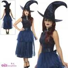 Womens Deluxe Midnight Blue Witch Adult Ladies Halloween Fancy Dress Costume