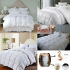 'Luxury Hotel Quality Goose Duck Feather & Down Duvet Quilt All Sizes 13.5 Tog