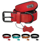 Black Soft Padded Leather Dog Collar Adjustable Collar For Labrador Boxer S-L