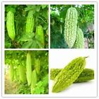 Cucumber seeds A variety of melon seeds chinese vegetable seed giant home and ga
