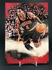 2013-14 PANINI COURT KINGS DERRICK RODE JUMBO BOX TOPPER CHICAGO BULLS
