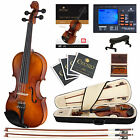 Cecilio CVN-300 Ebony Fitted Violin 4/4 3/4 1/2 1/4